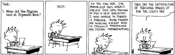 Calvin and Hobbes - The system