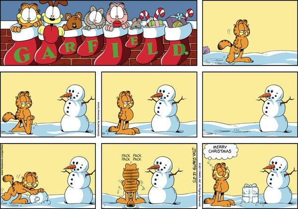 Garfield 171 The Comic Ninja