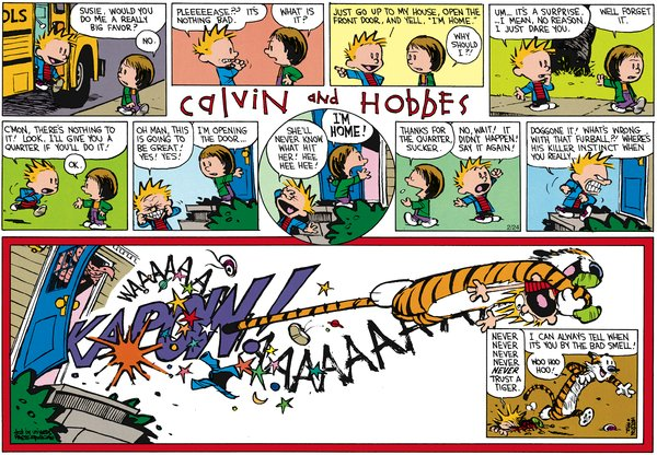 Calvin and Hobbes - I'm Home!