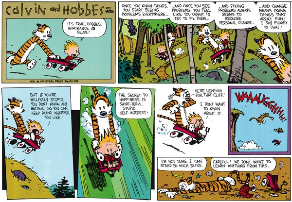 Calvin and Hobbes - Bliss
