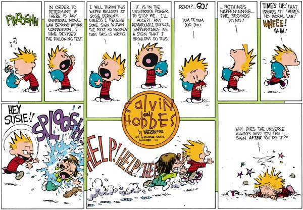 Calvin and Hobbes - The Universe
