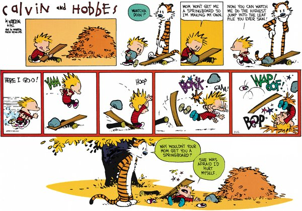 Calvin and Hobbes - Someone could get hurt