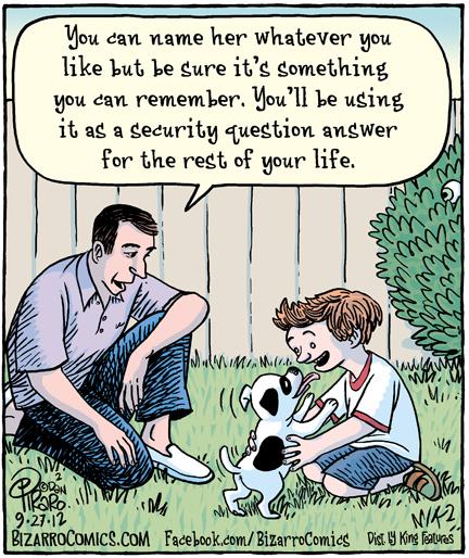 Bizarro - Internet Security
